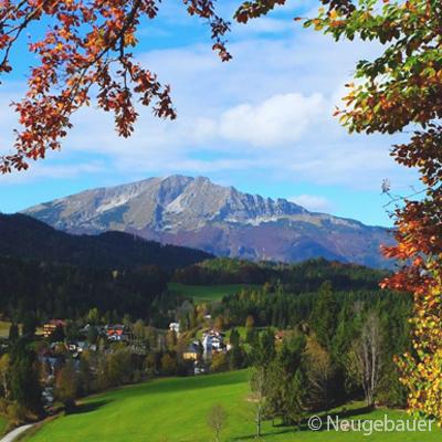 Aktuell-Herbst